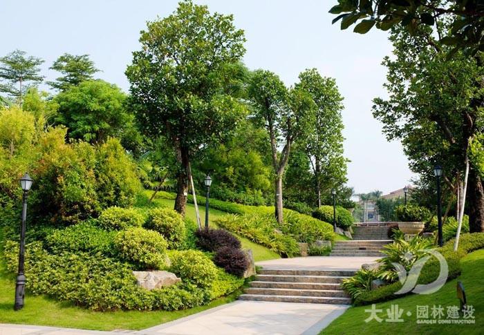 园林绿化养护对树木移栽时,如何养护根部促成活?