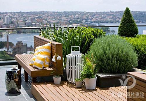 庭院绿化养护